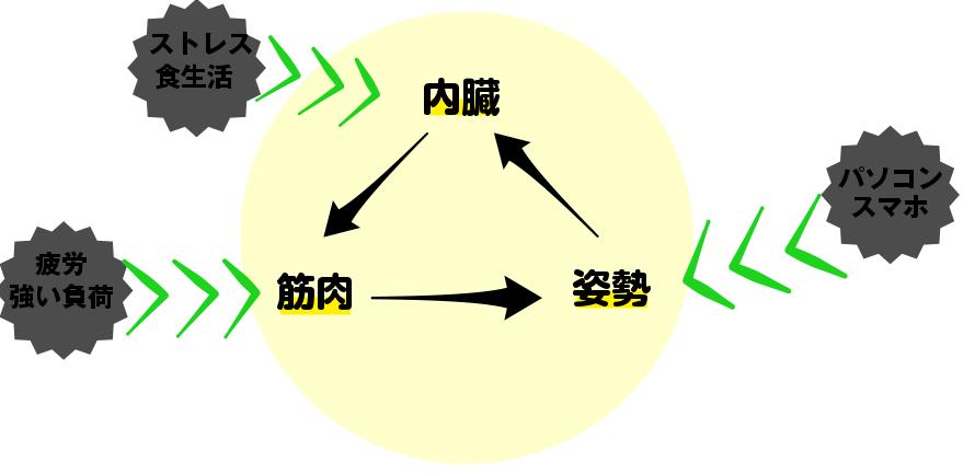 design (29)